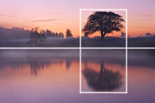 Как фотографировать природу?