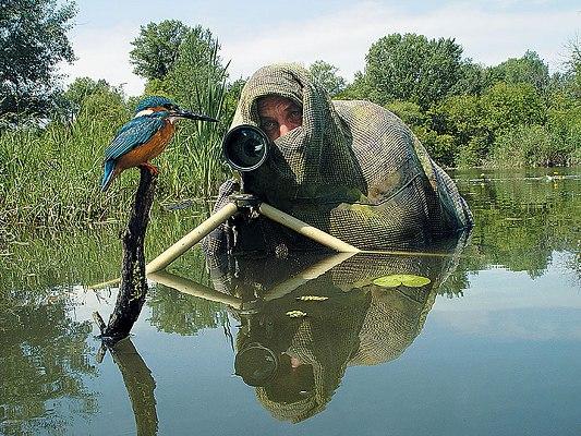Фотоохота (жанр фотографической охоты в фотоискусстве)