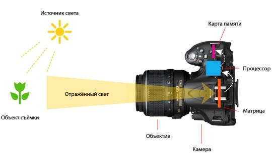 Как устроен и работает цифровой фотоаппарат?