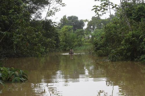 Амазонка река в южной америке