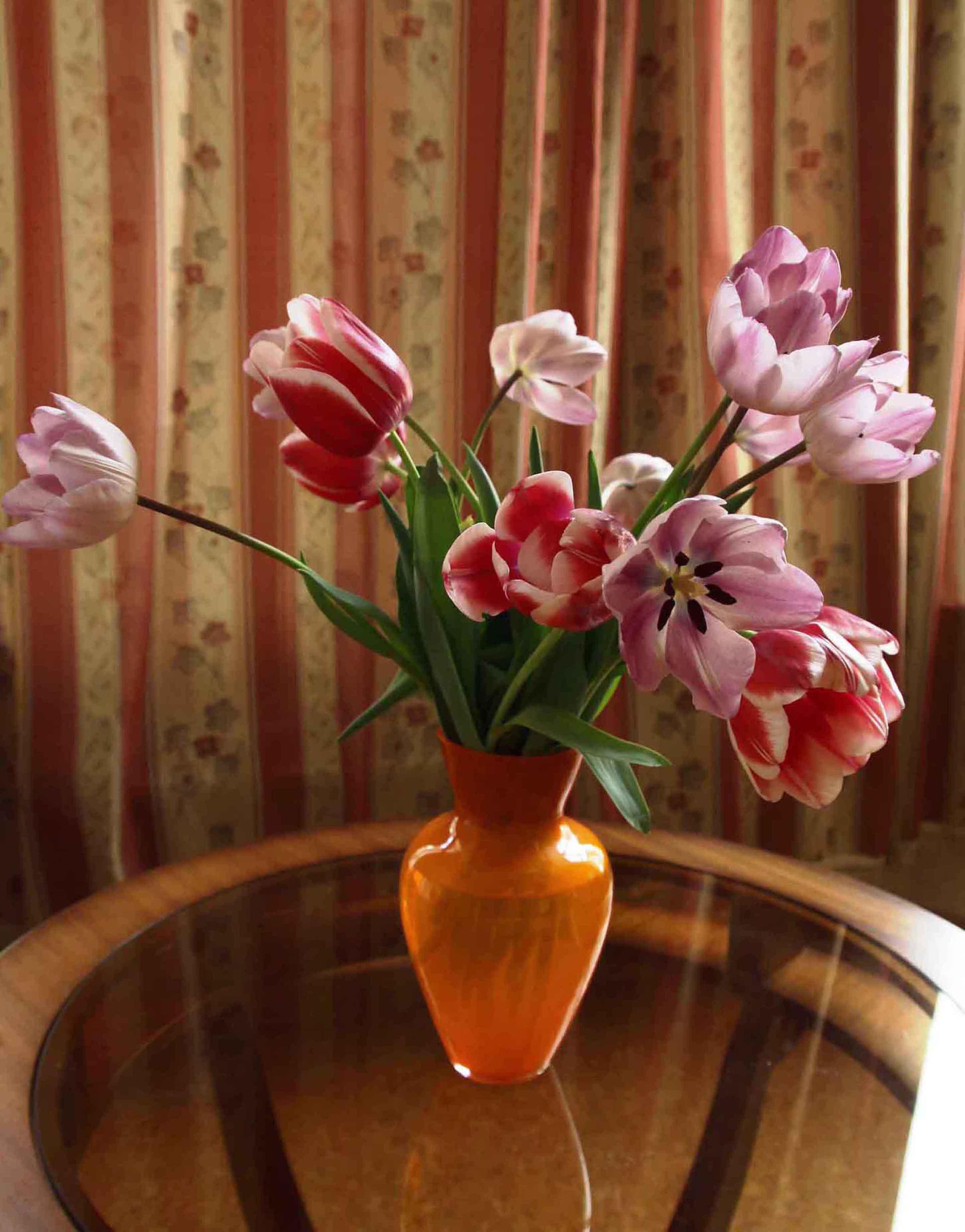 Фото цветы тюльпаны в вазе